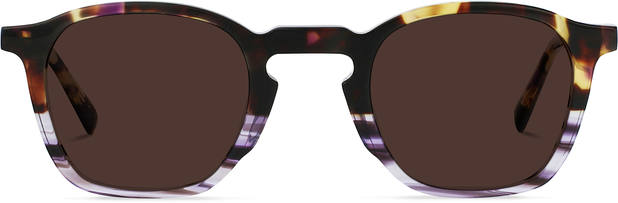 The Purist | Violet Shades Tortoise