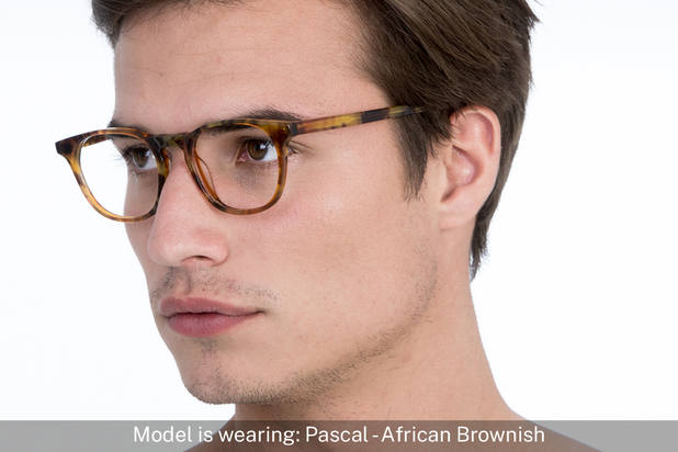Pascal | African Brownish 5