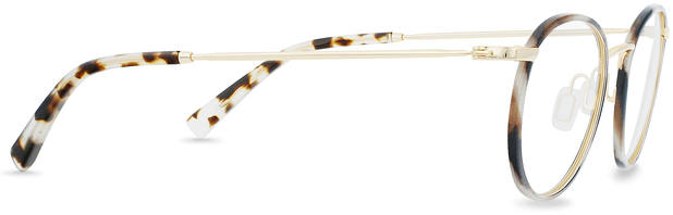 Duke | Light Gold Titanium with Indian Summer Tortoise 2