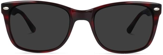 Charlie | Tortoise and Ruby Red 1