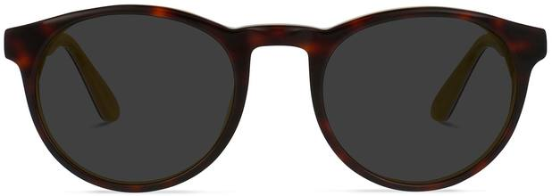 Parker | Tortoise and Tuscan Sun 1