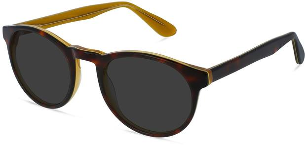 Parker | Tortoise and Tuscan Sun 3
