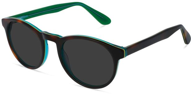 Parker | Tortoise and Emerald 3
