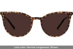 Elise | Leopard Brown with Copper Metal 5