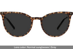 Elise | Leopard Brown with Copper Metal 4