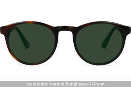 Parker | Tortoise and Emerald 5